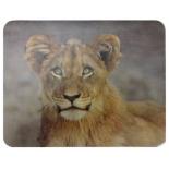 коврик для мышки Buro BU-M40030, лев
