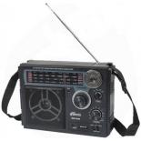 Радиоприемник Ritmix RPR-888 (переносной)