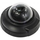 IP-камера D-Link DCS-6004L/UPA/A2A, Черная