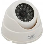 Камера видеонаблюдения Orient AB-DM-25W, фальшкамера