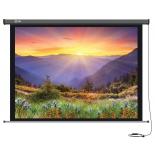 экран Cactus Professional Motoscreen CS-PSPM-149x265, Серый