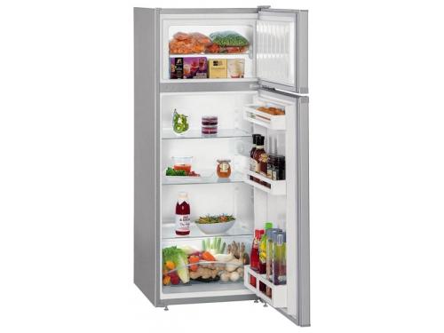 Холодильник Liebherr CTPsl 2521-20, вид 1