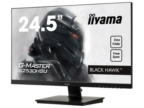 Монитор Iiyama G2530HSU-B1, черный, вид 1