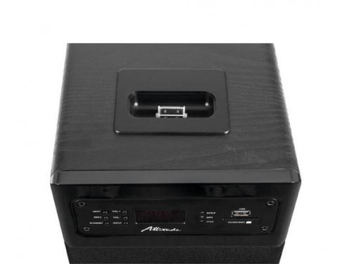Акустическая система Attitude Uni One L (2.0, 2x50W, RCA, S/PDIF, USB, картридер, Lightning), чёрная, вид 5