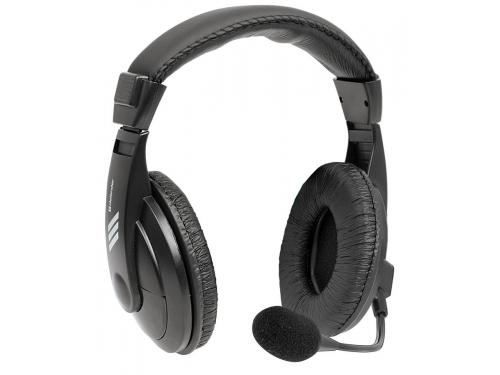 Гарнитура для ПК Defender Gryphon HN-750, чёрная, вид 1
