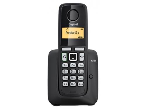 Радиотелефон Gigaset A220, Чёрный, вид 1