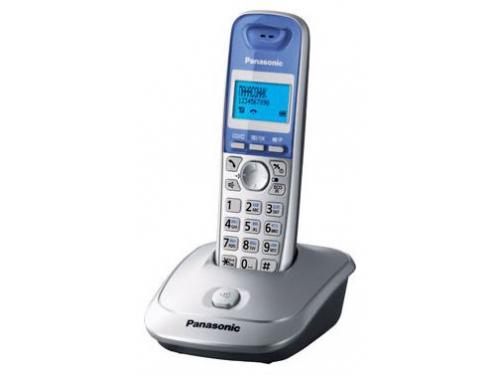 ������������ DECT Panasonic KX-TG2511RUS �����������/�������, ��� 1