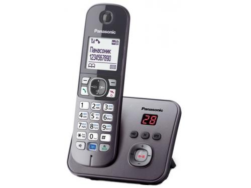 Радиотелефон Panasonic KX-TG6821RUM, Серый металлик, вид 1