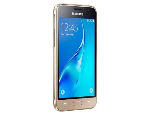 Смартфон Samsung J1 SM-J120, золотистый, вид 1