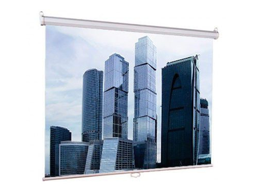 Экран Lumien Eco Picture LEP-100102 1:1 (180х180), вид 2