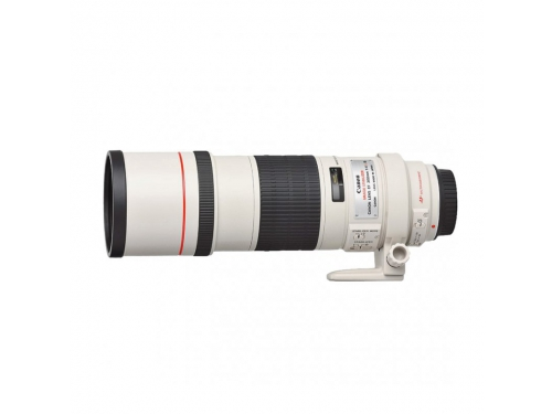 �������� ��� ���� Canon EF 300mm f/4L IS USM (2530A017), ��� 1