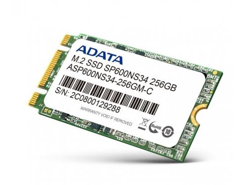 ������� ���� ADATA Premier SP600 256Gb, M.2 2242, SATA3 (ASP600NS34-256GM-C), ��� 1