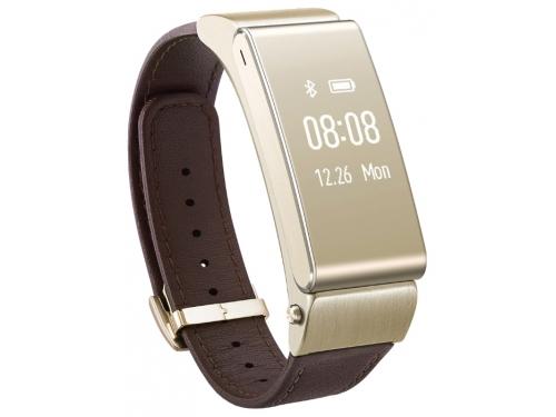 ������-������� Huawei TalkBand B2 Premium, �������, ��� 1