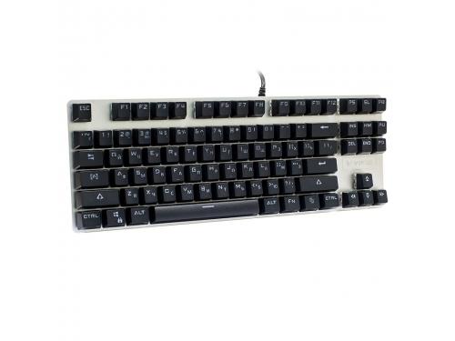 Клавиатура Rapoo V500 Alloy 17714 (Blue Switch), вид 1