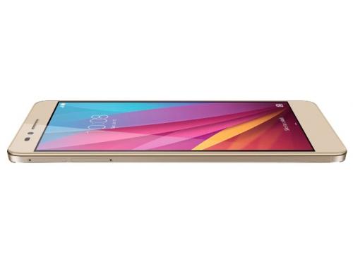 �������� Huawei Honor 5X Gold (KIW-L21), ����������, ��� 3