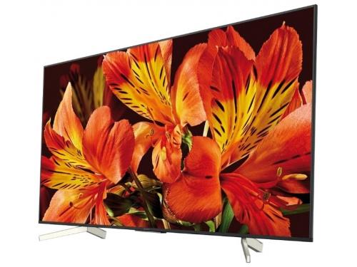 телевизор Sony KD55XF8596, черный, вид 1