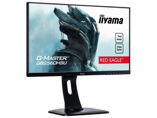 Монитор Iiyama G-Master GB2560HSU-B1, черный, вид 1