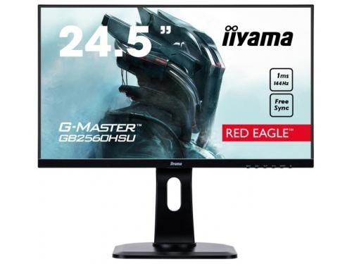 Монитор Iiyama G-Master GB2560HSU-B1, черный, вид 2