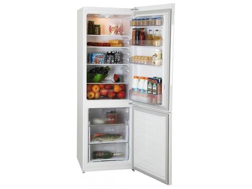 Холодильник Beko CSMV528021 W, белый, вид 2