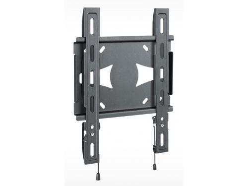 Кронштейн Holder LCDS-5045 металлик 19