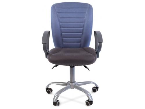 Кресло офисное Chairman 9801 Эрго Россия сид.10-128 серый/сп.10-141 голубой, вид 2