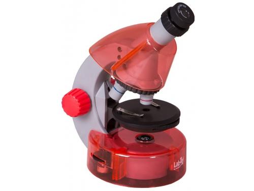 Микроскоп Levenhuk LabZZ M101, апельсиновый, вид 1