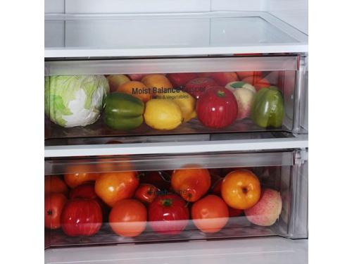 Холодильник LG GC-B559EABZ, вид 6