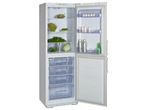 Холодильник Бирюса 125KLESSA белый, вид 1