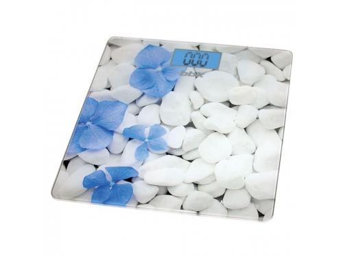Напольные весы BBK BCS3002G, бело-голубые, вид 1