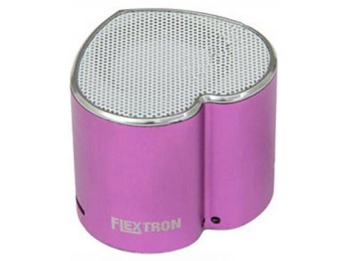 Портативная акустика Flextron F-CPAS-328B1-PR, фиолетовая, вид 1