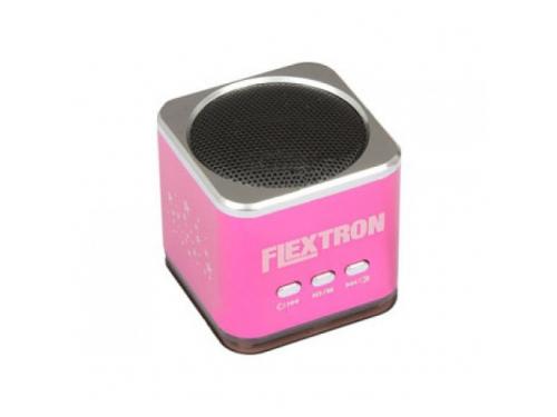����������� �������� Flextron F-CPAS-322B1-PK, �������, ��� 1