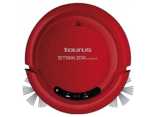 ������� Taurus Striker Mini, ��� 2