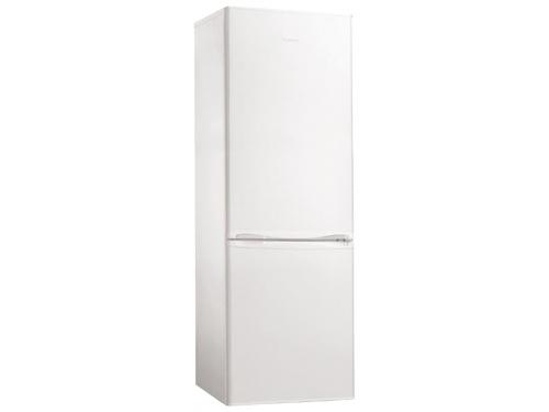 Холодильник Hansa FK239.4, белый, вид 1