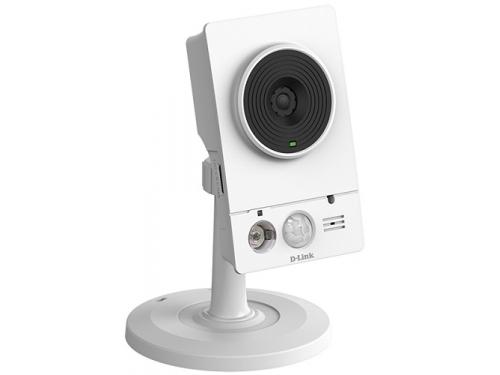 Web-камера D-Link DCS-4201/A1A, вид 1