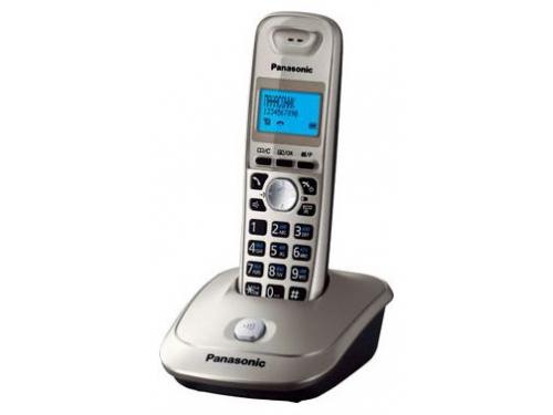 Радиотелефон Panasonic KX-TG2511RUN, платиновый, вид 1