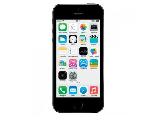�������� APPLE iPhone 5S 16Gb, ��� �����, �����-�����, ��� 1
