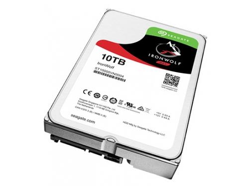 Жесткий диск Seagate SATAIII 10000Gb 7200rpm 256Mb ST10000VN0004, вид 1