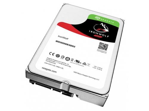 Жесткий диск Seagate SATAIII 4000Gb 5900rpm 64Mb ST4000VN008, вид 1