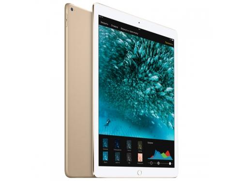 Планшет Apple iPad Pro 12.9 256Gb Wi-Fi , вид 2