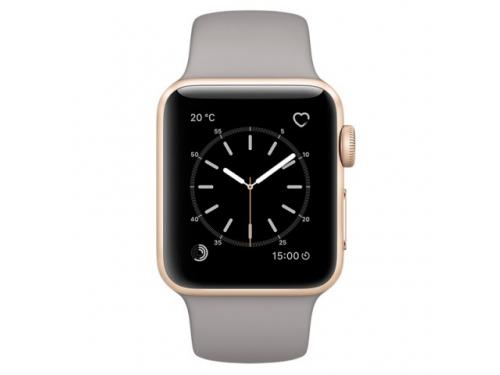 Умные часы Apple Watch Series 1 38mm  (MNNJ2RU/A) золотисто-серые, вид 1