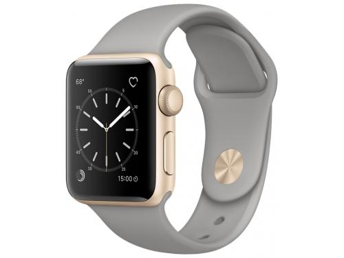 Умные часы Apple Watch Series 1 38mm  (MNNJ2RU/A) золотисто-серые, вид 2