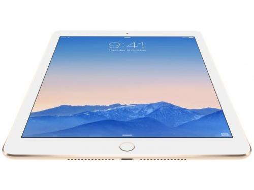 ������� Apple iPad Air 2 64Gb Wi-Fi, ����������, ��� 4