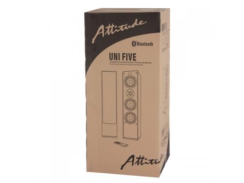Акустическая система Attitude Uni Five (2x 50 Вт, 3 полосы, USB, Bluetooth), вид 9