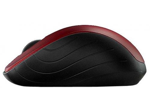 Мышка Rapoo 3000p Red USB, вид 3