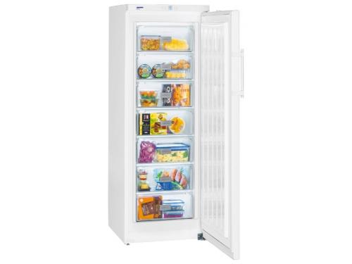 Холодильник Liebherr GP 2733 Белый, вид 1