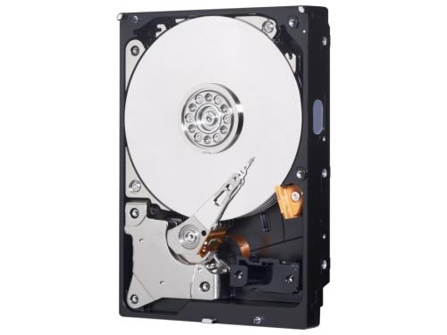 Жесткий диск Western Digital SATA-III 320Gb 7200, 16Mb WD3200AAKX, вид 1