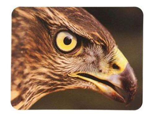 Коврик для мышки Buro BU-M40005, орёл, вид 1