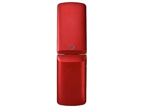 Сотовый телефон LG G360 LGG360.ACISRD, вид 2