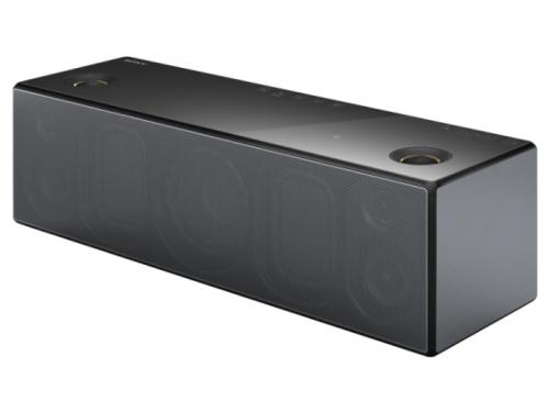 Портативная акустика Sony SRS-X99/C, вид 2