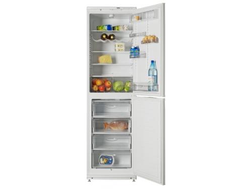 Холодильник Атлант ХМ 6025-031, белый, вид 1